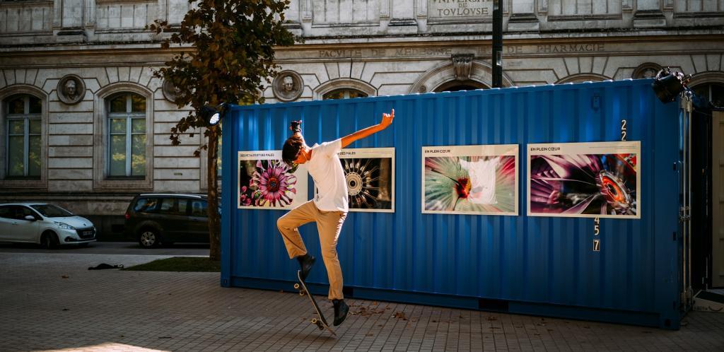 L'exposition « Mimesis » fait escale à Toulouse !